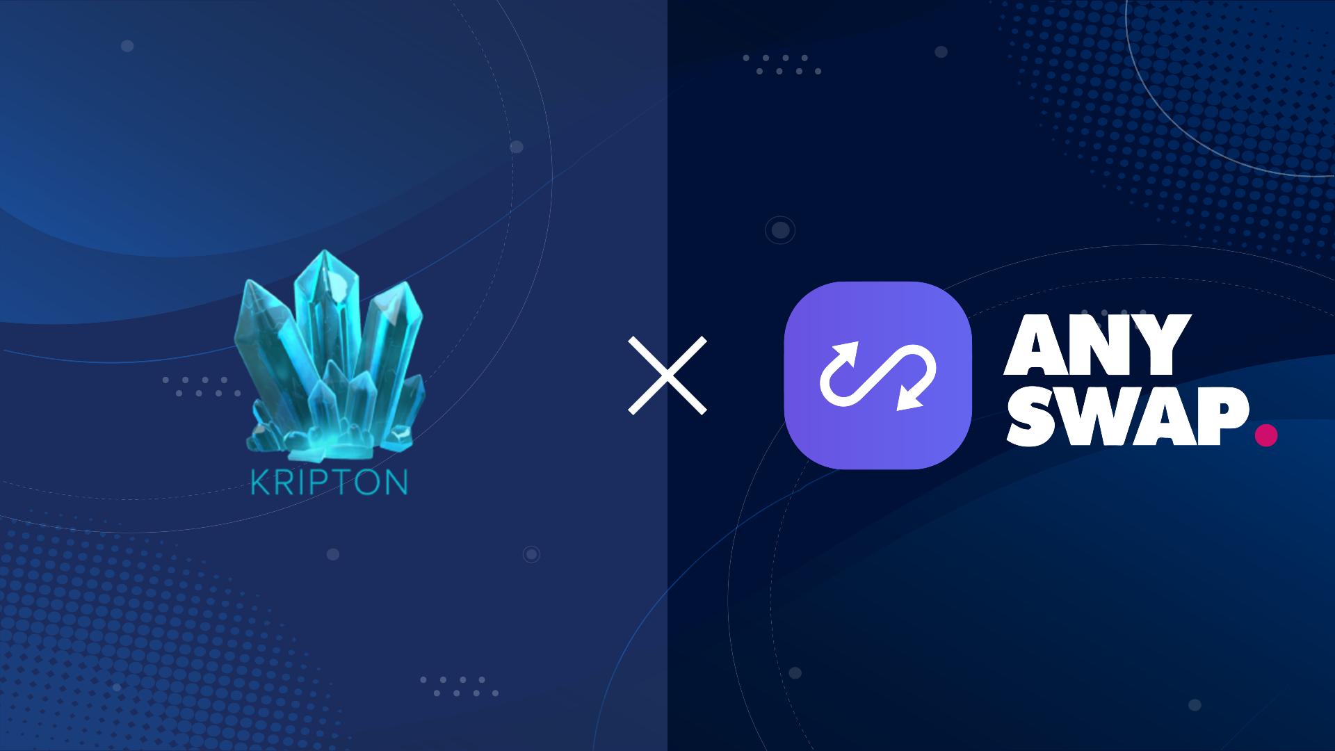 Anyswap Partnership Template 2.0